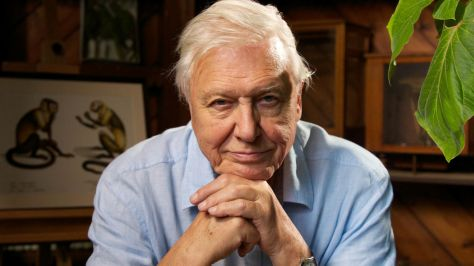 david-attenborough-birthday